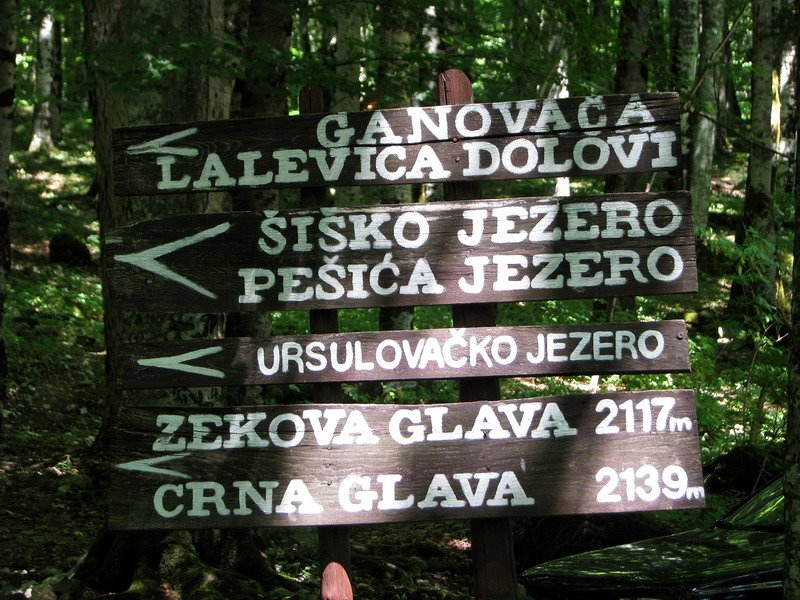 biogradska gora trekking trails