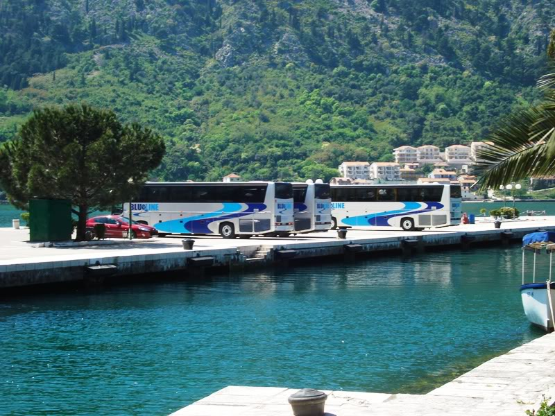 Buses in Port of Kotor