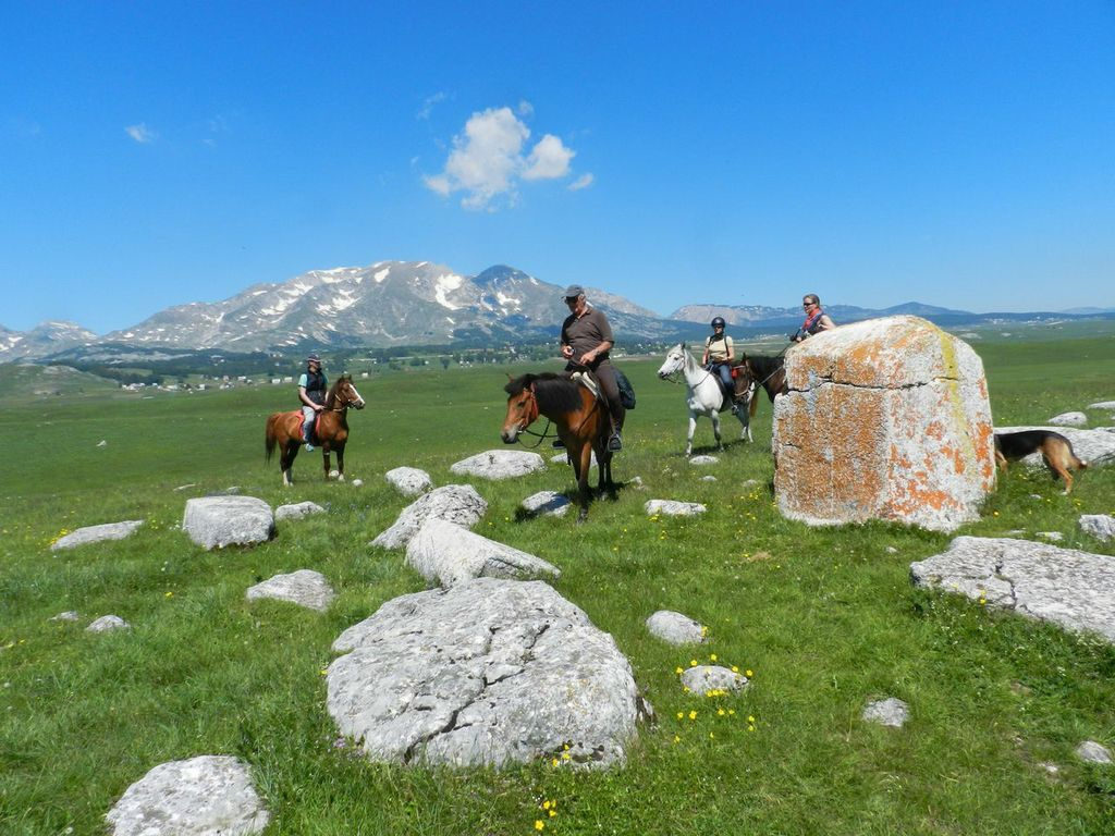 horse ridine durmitor mountain