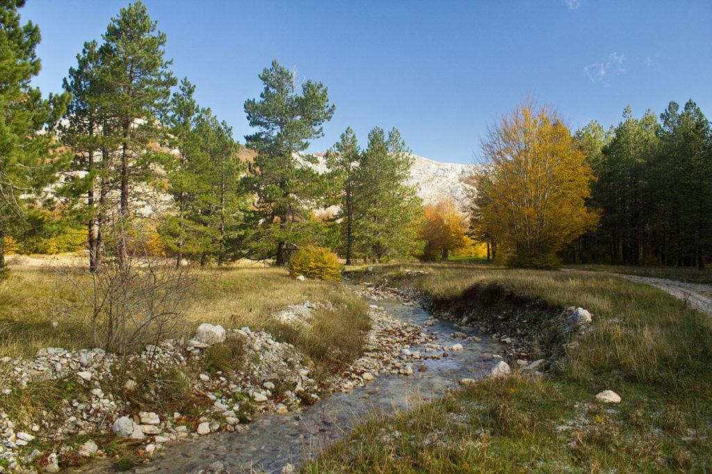 national park lovcen montenegro