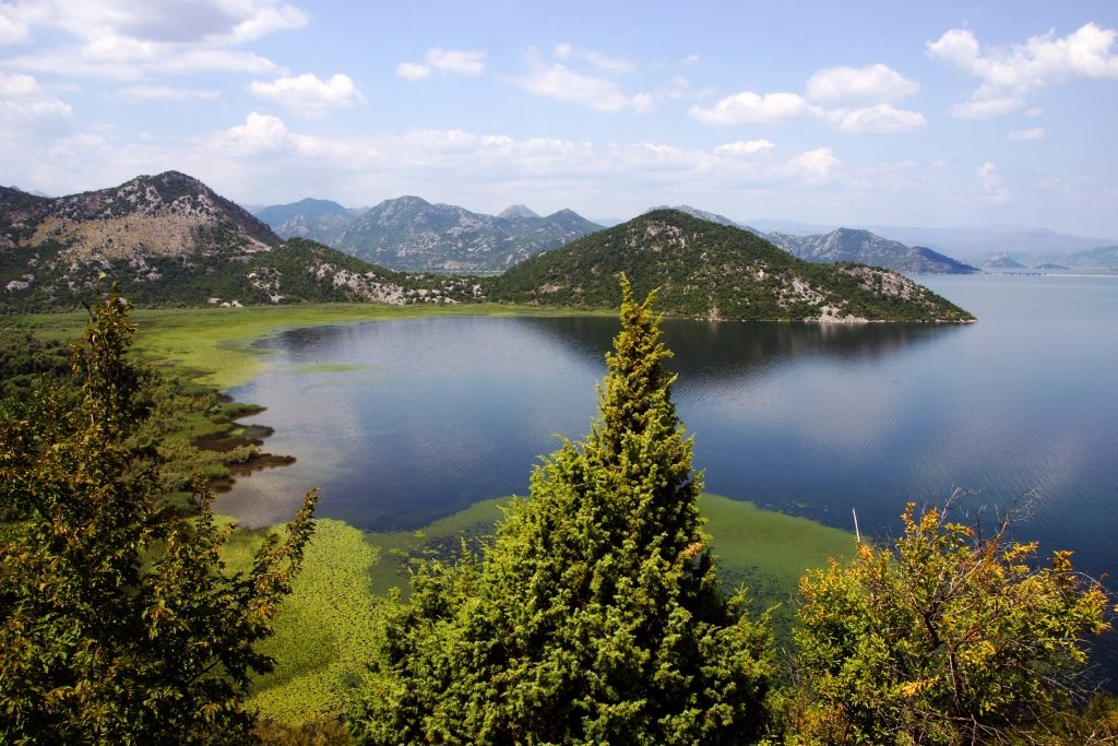 Nature of Skadar Lake