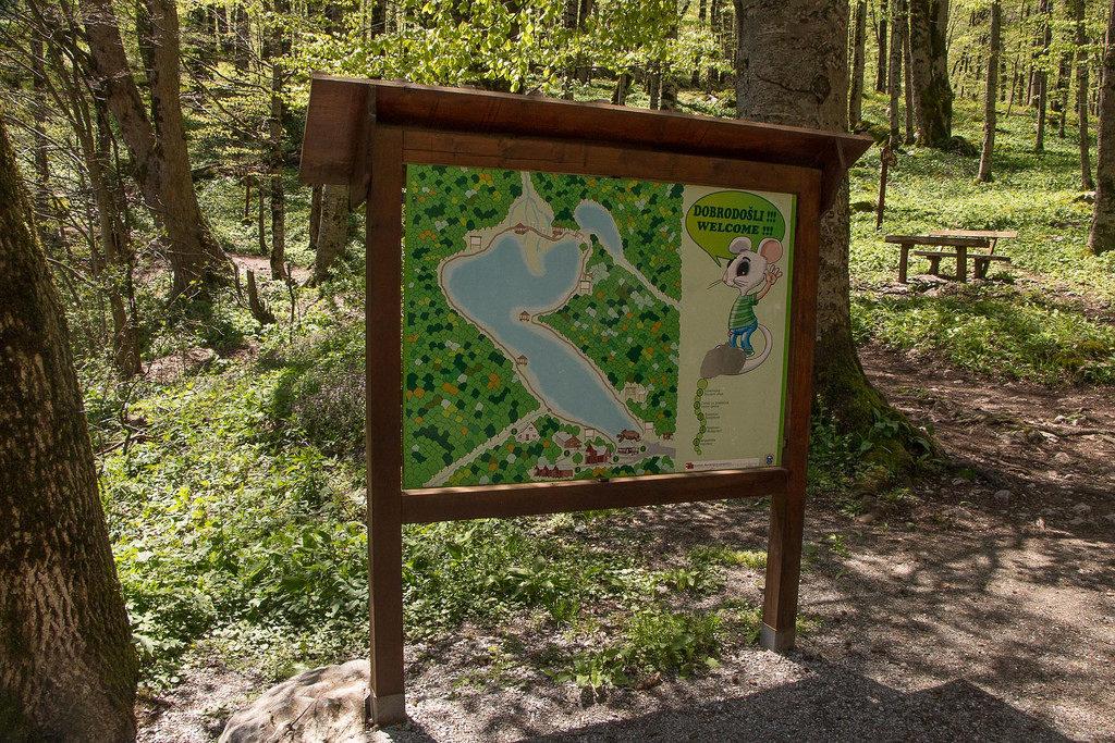 parco nazionale biogradska gora montenegro
