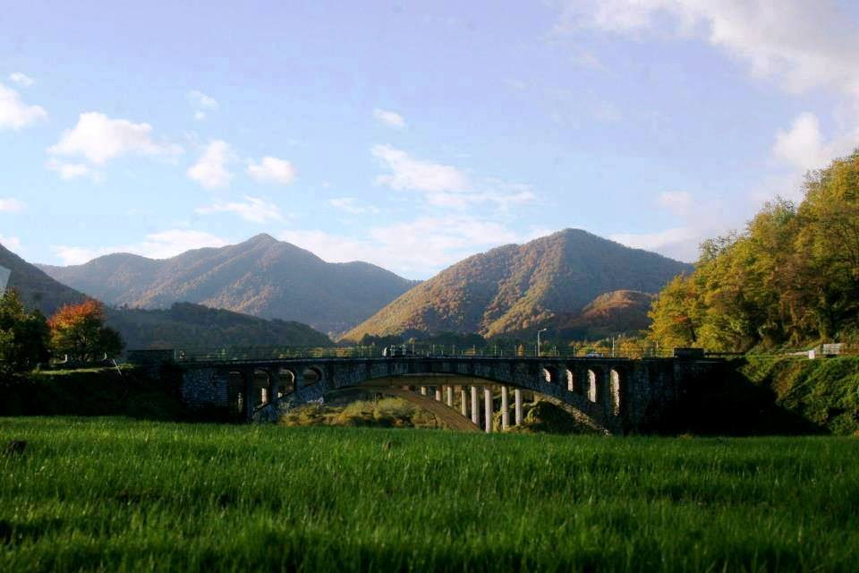 bridge in mojkovac