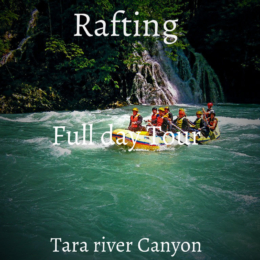 Rafting on the amazing Tara river