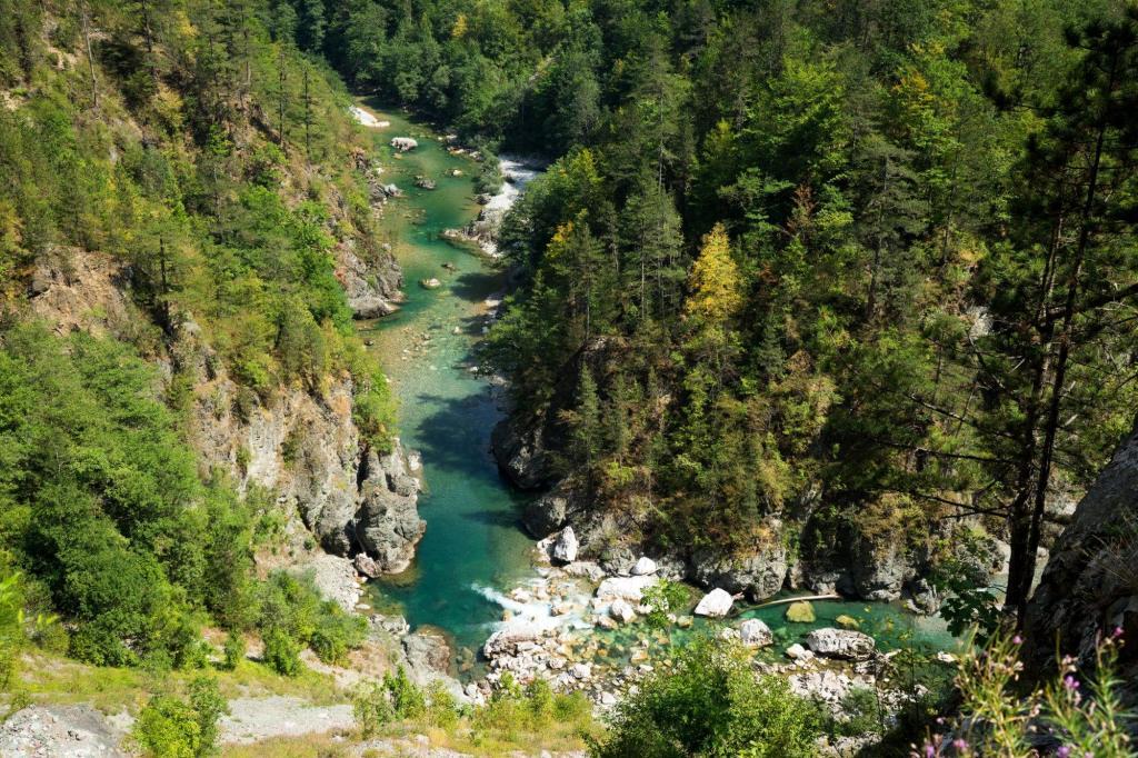 Le Canyon de la rivière Tara Monténégro