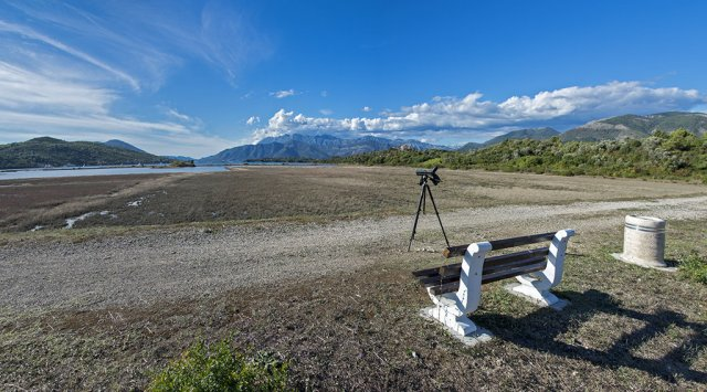 Birdwatching in the Tivat Solila