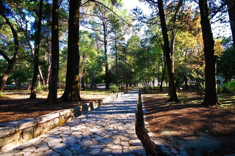 Tivat - Walking path in Large Town Park