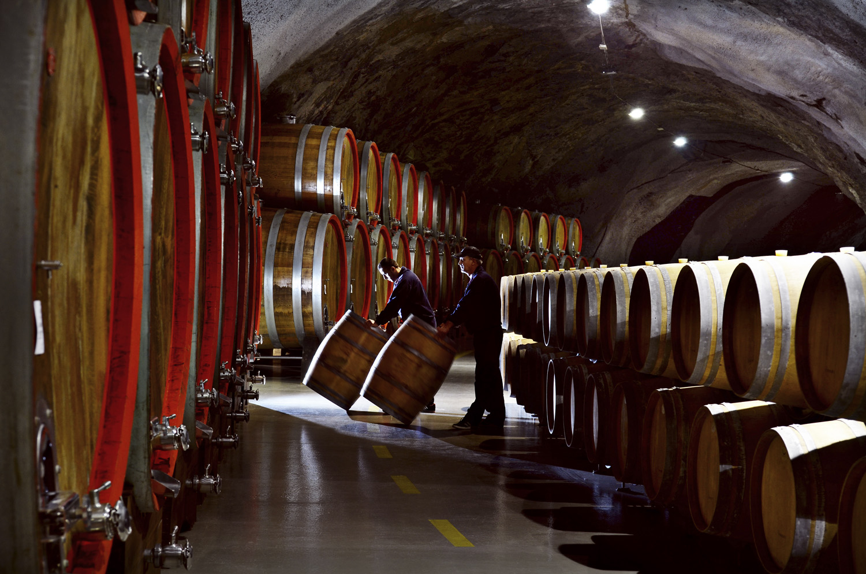 Wine cellar Sipcanik Montenegro