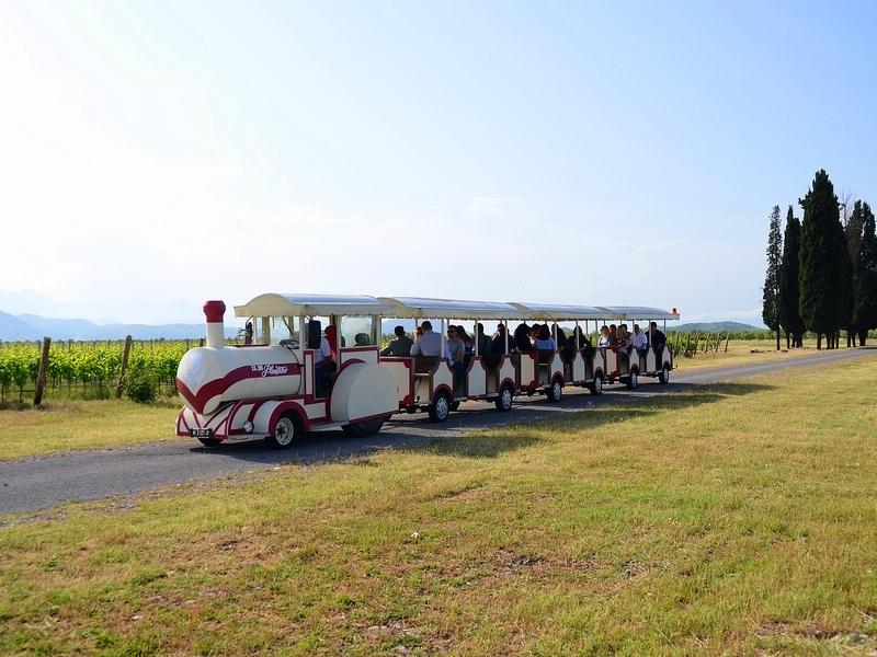 Wine road train Plantaze