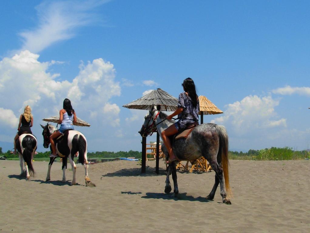 Ada Bojana Horse Riding